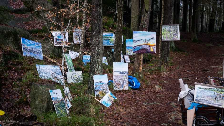 tavlor i skogen