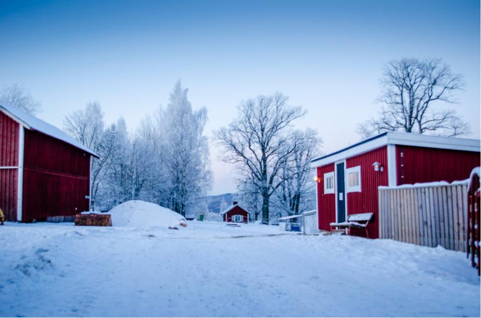 snö och frost på landet