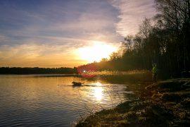 solnedgång härlanda tjärn badande hund