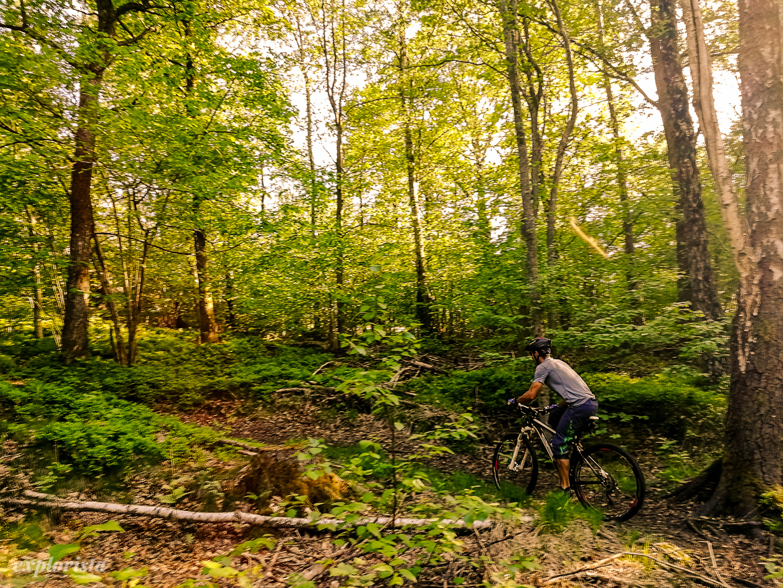 mountainbike i skatås