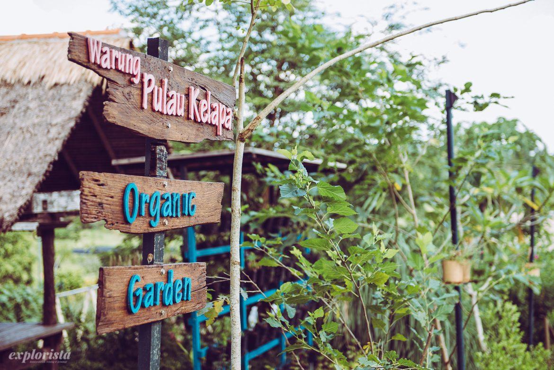 skyltar i trädgård på bali