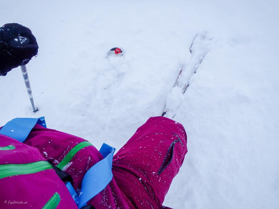 skidor puder