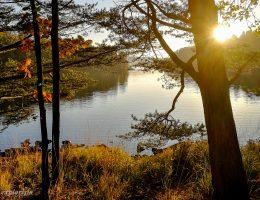 solnedgång höst delsjön