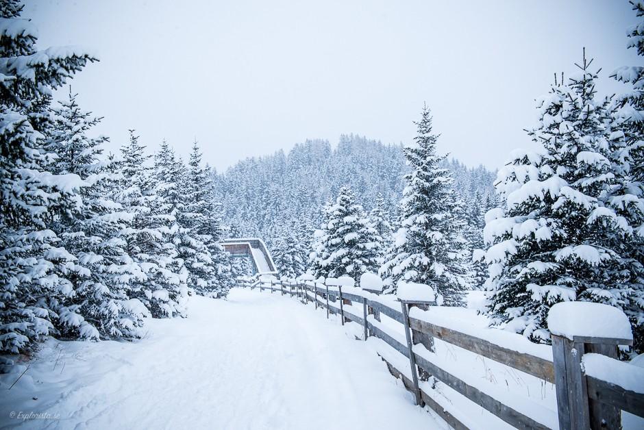 serfaus bikepark winter