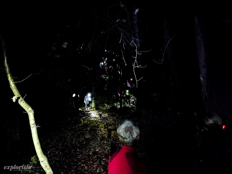 night trail running