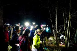 NIGHT TRAIL RUNNING MED FOREST FEMMES