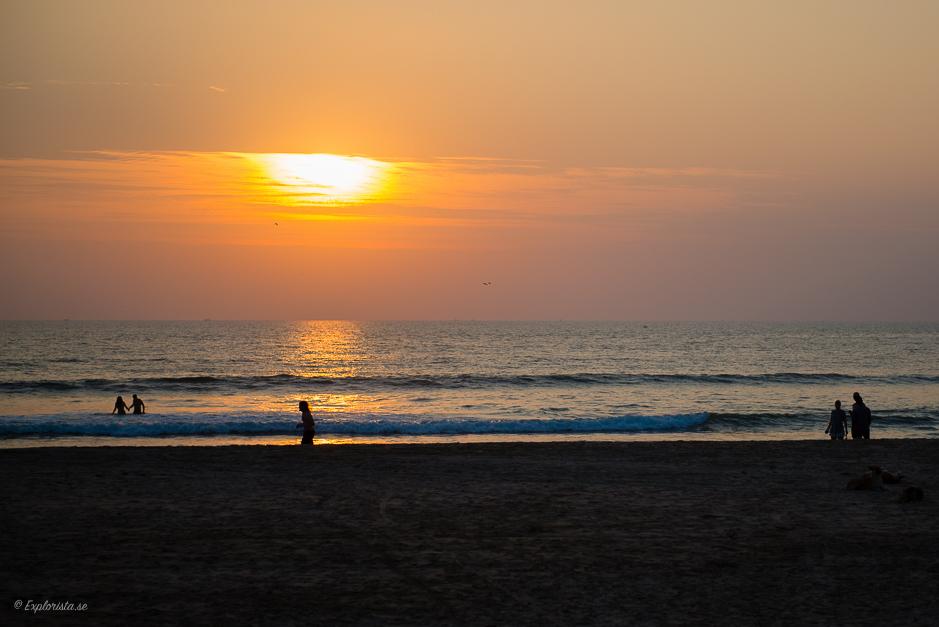 solnedgång goa