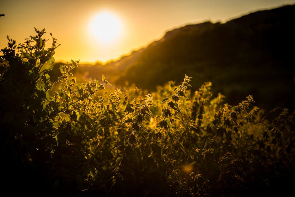 solnedgång hälsö