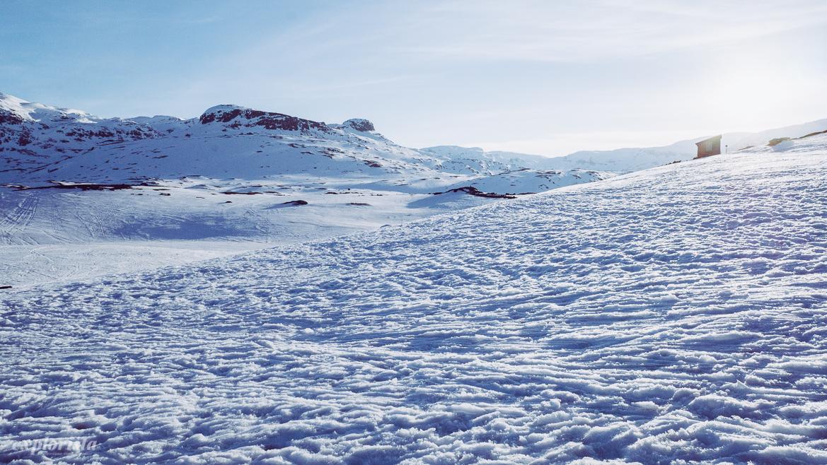Haukeliseter snö