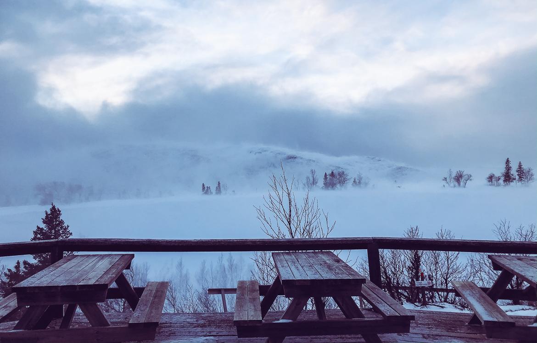 Utsikt över vintersjö