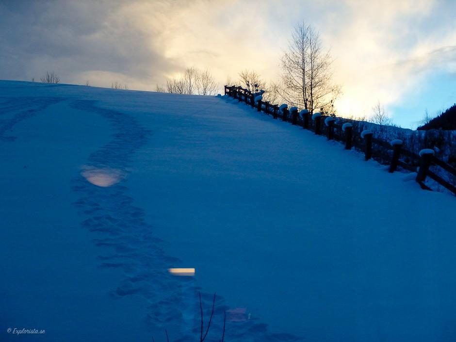 utsikt solnedgång snö