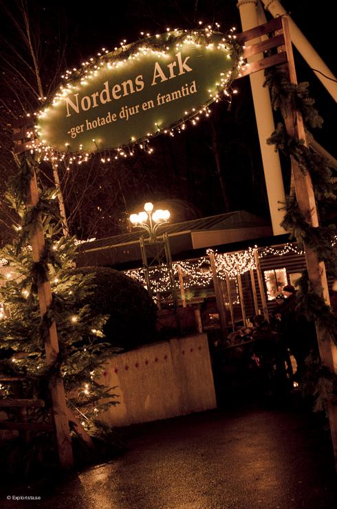Nordens ark - Jul på Liseberg
