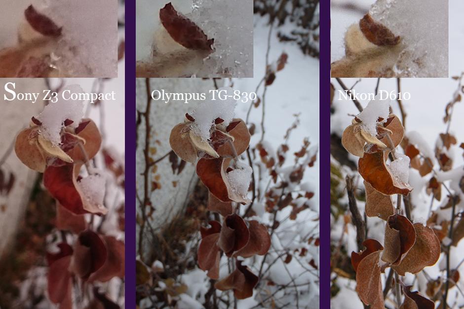 jämförelse tg-830, d610, mobilkamera