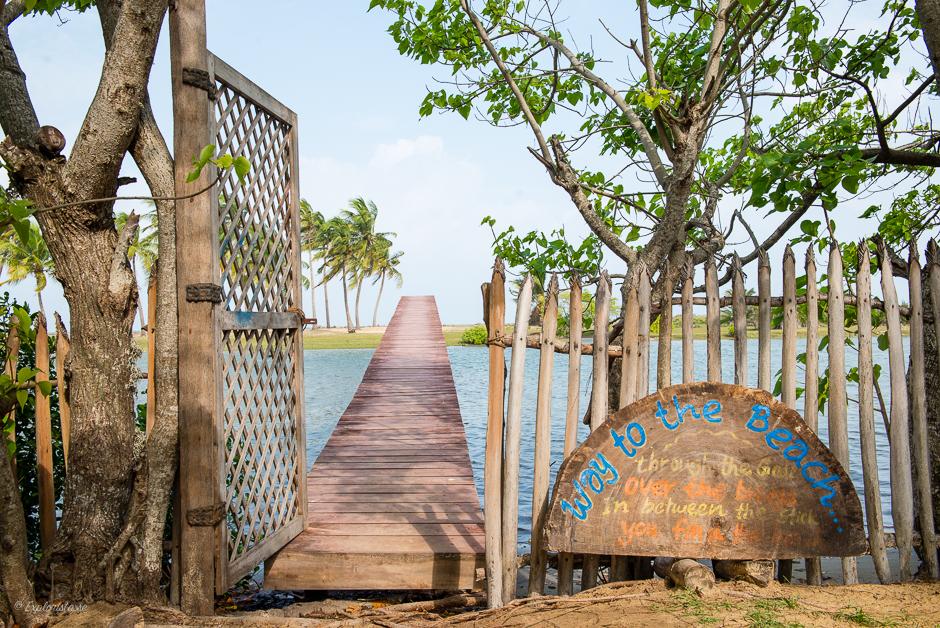 bro över lagun palmer sri lanka