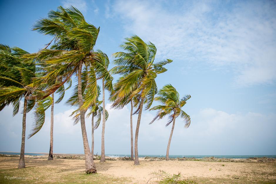 palmer strand sri lanka