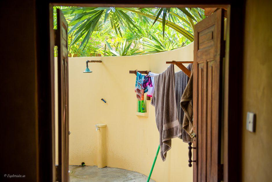 utebadrum under palmer