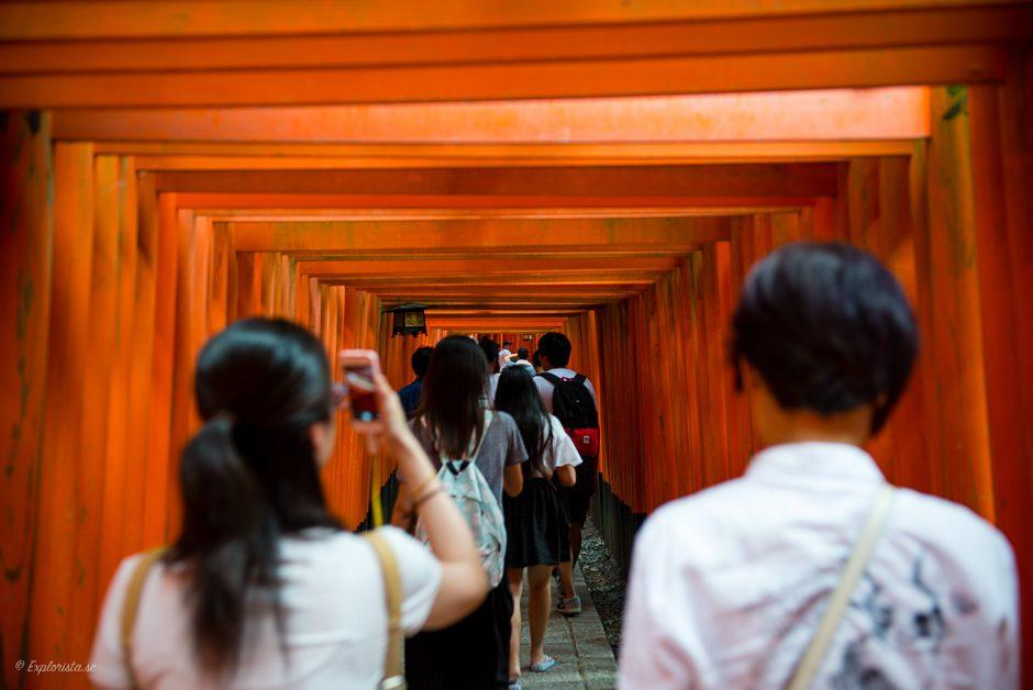 orange portar kyoto