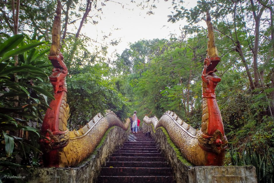 laos trappa ormar