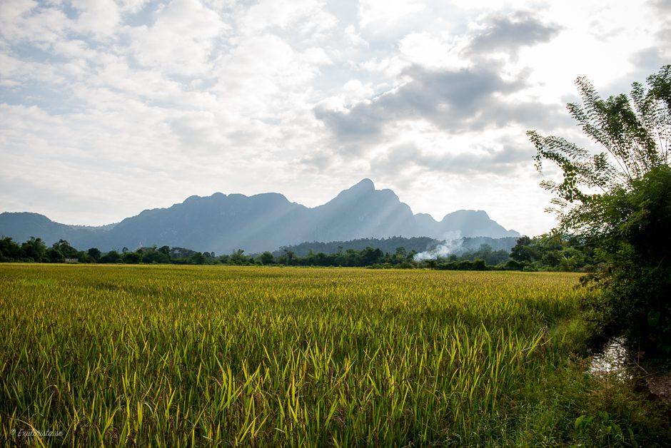 laos fält och berg