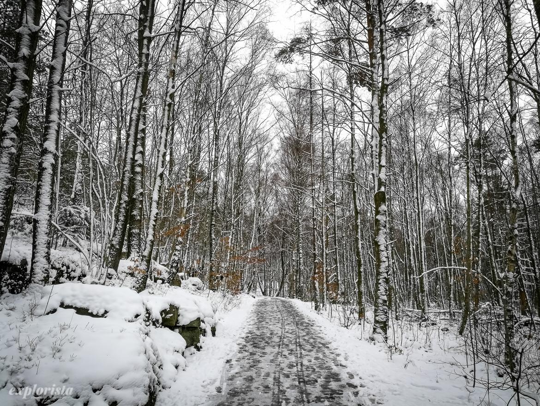 snöigt löparspår
