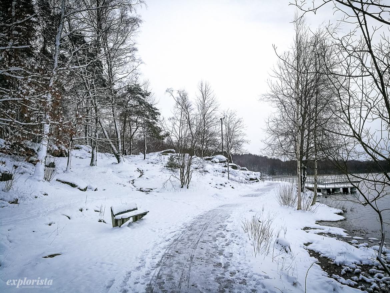 snöigt löparspår härlanda tjärn