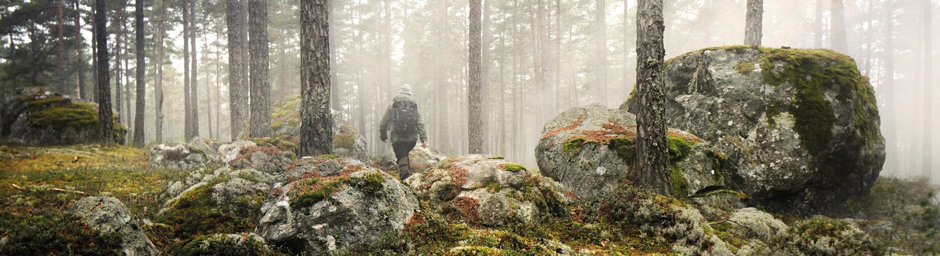skog vandrare lundhags