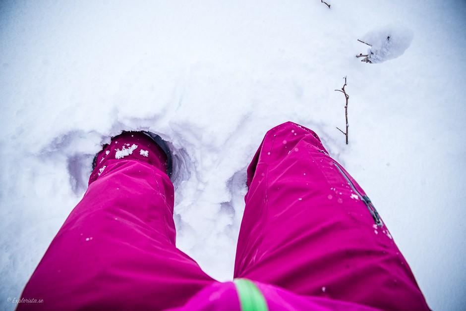 djup snö ben