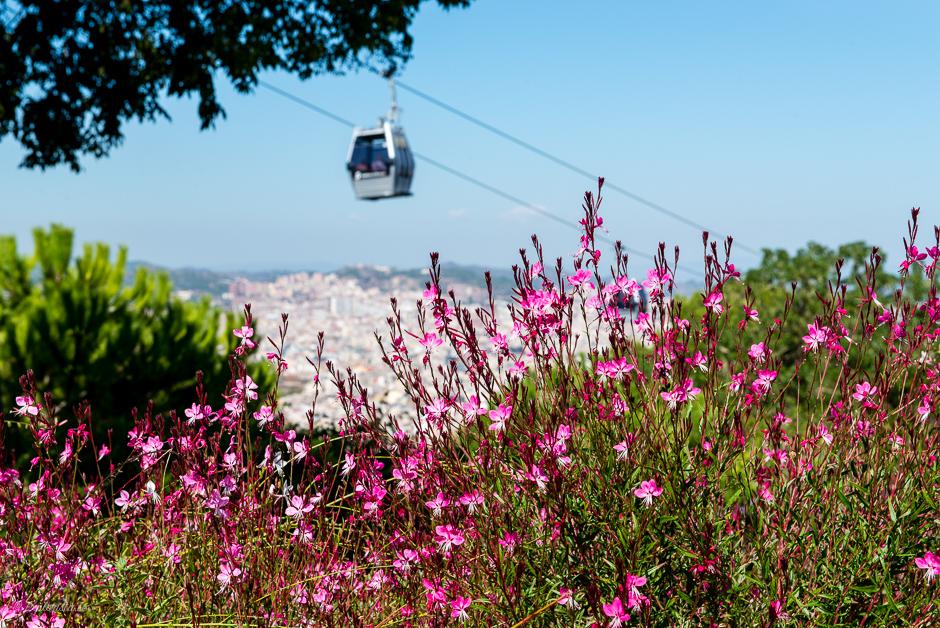 funicular till montjuic