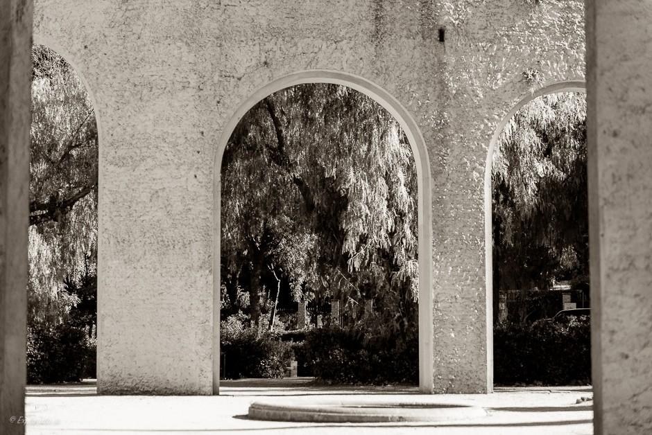 mur och trädgård