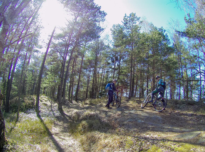 mountainbike vättlefjäll