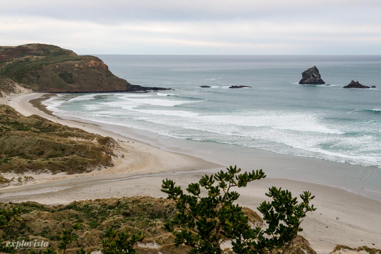 Utsikt strand utanför Dunedin