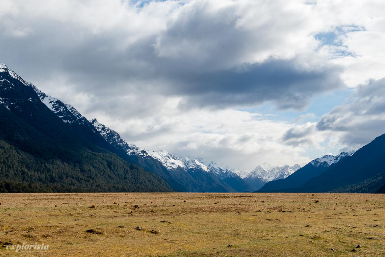 nya zeeland berg & fält