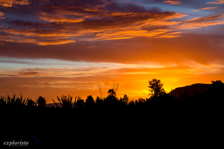 solnedgång orange