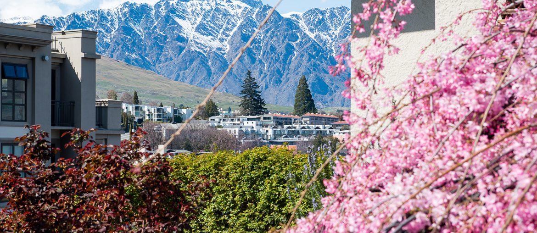 körsbärsblommor, stad & berg - queenstown