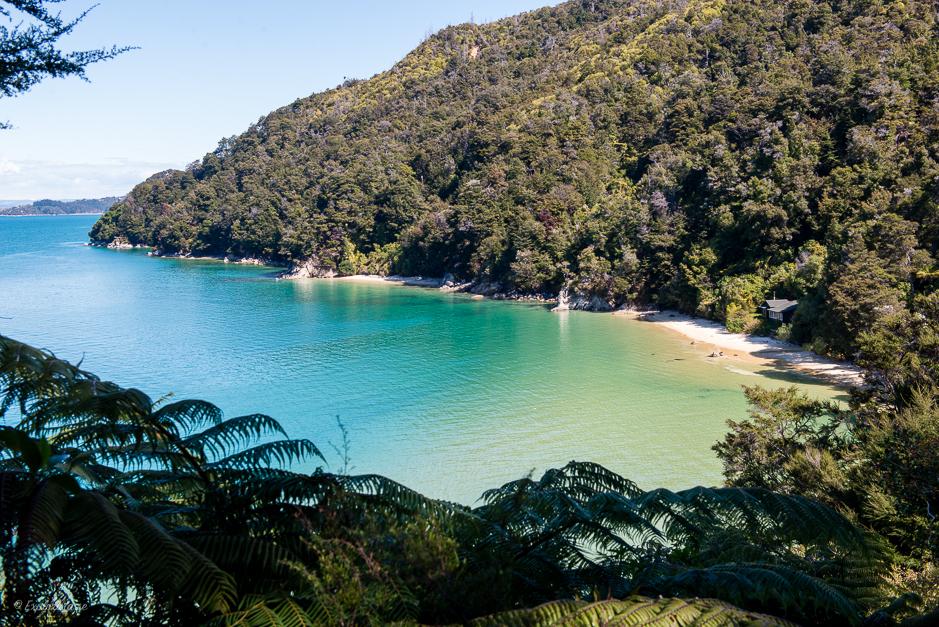 abel tasman park hav