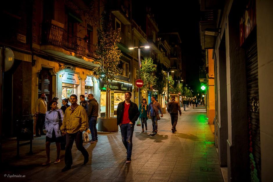 gata barcelona