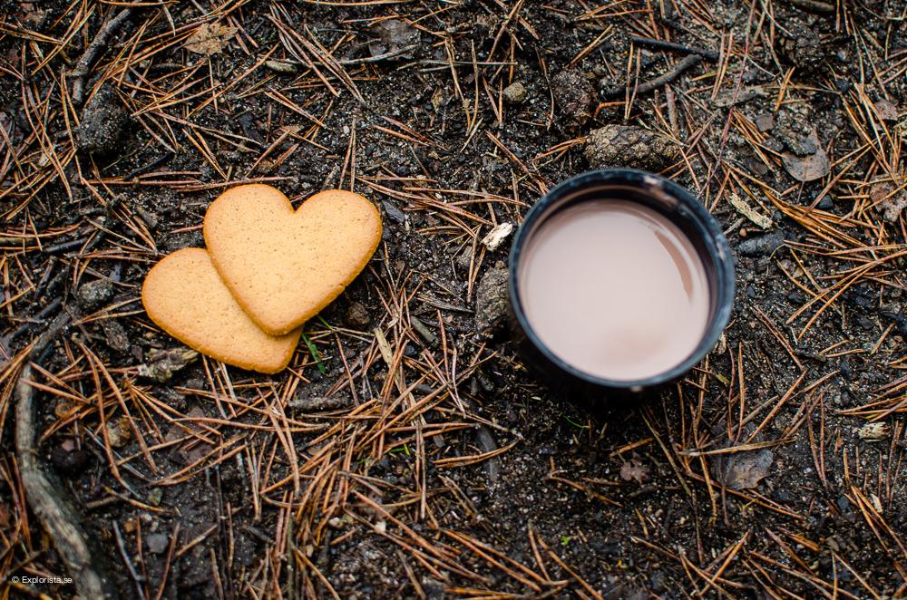 pepparkakor och varm choklad