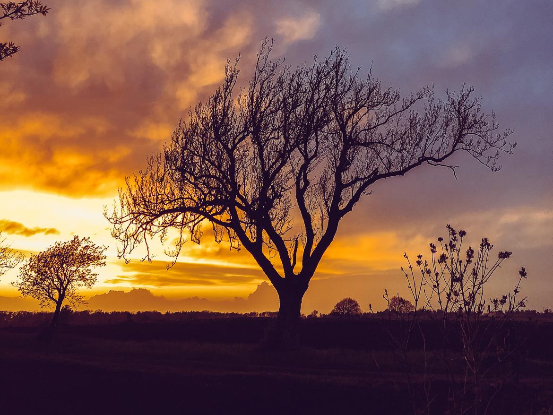 solnedgång öland
