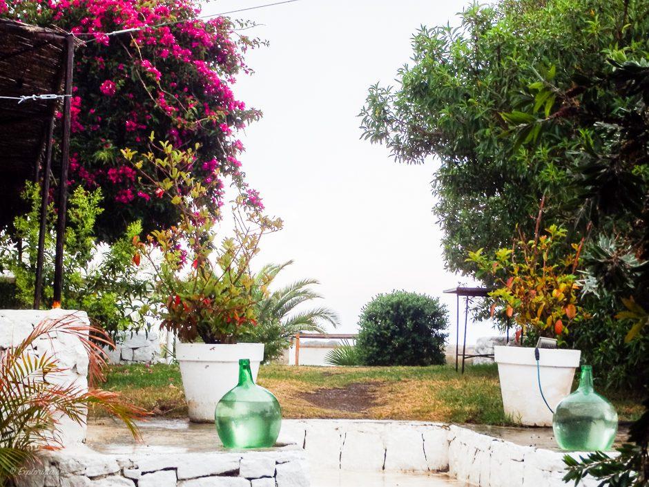 regn i trädgård spanien