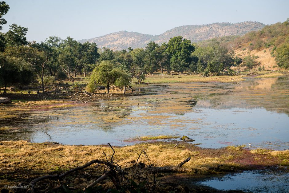 ranthambhore nationalpark