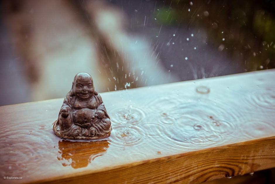 buddhastaty regn