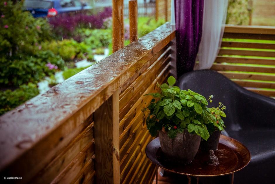 sommarregn altan