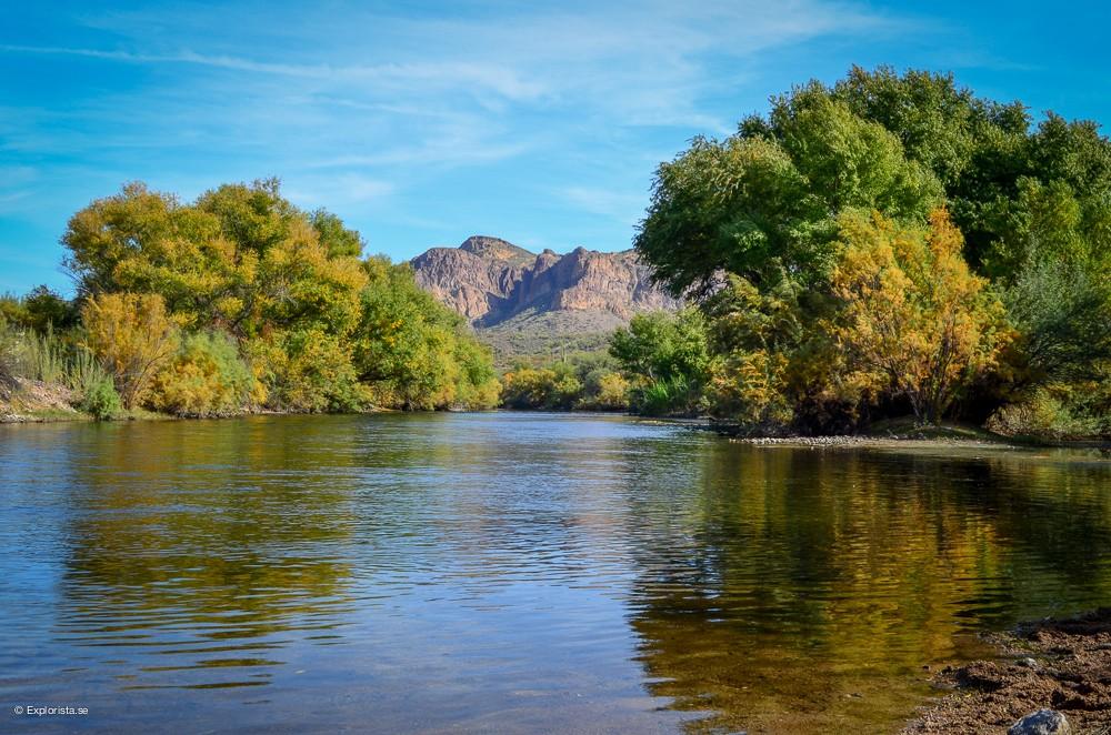 flod arizona