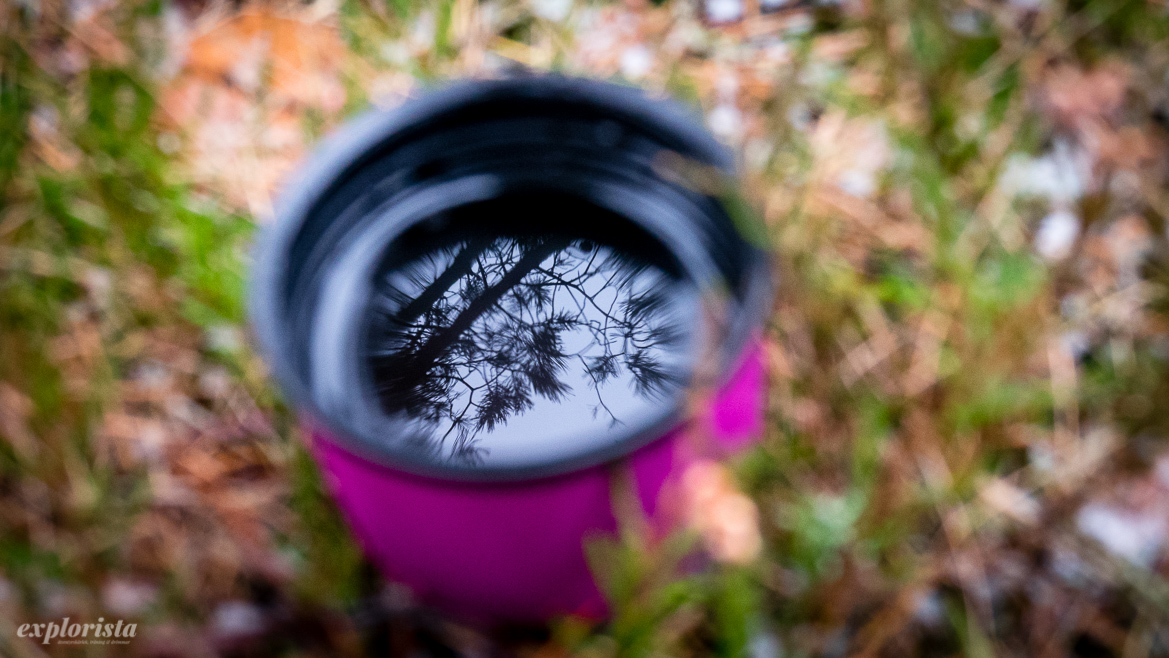 reflektion av träd i temugg utomhus