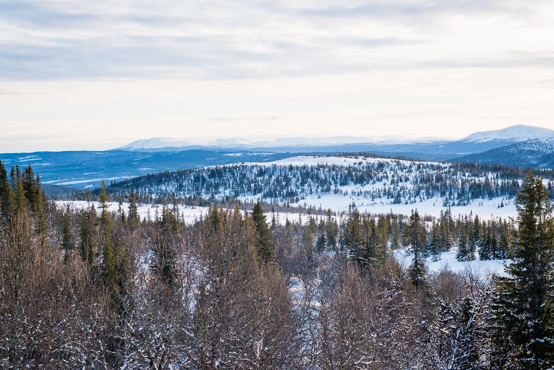 utsikt över åresjön från ovan