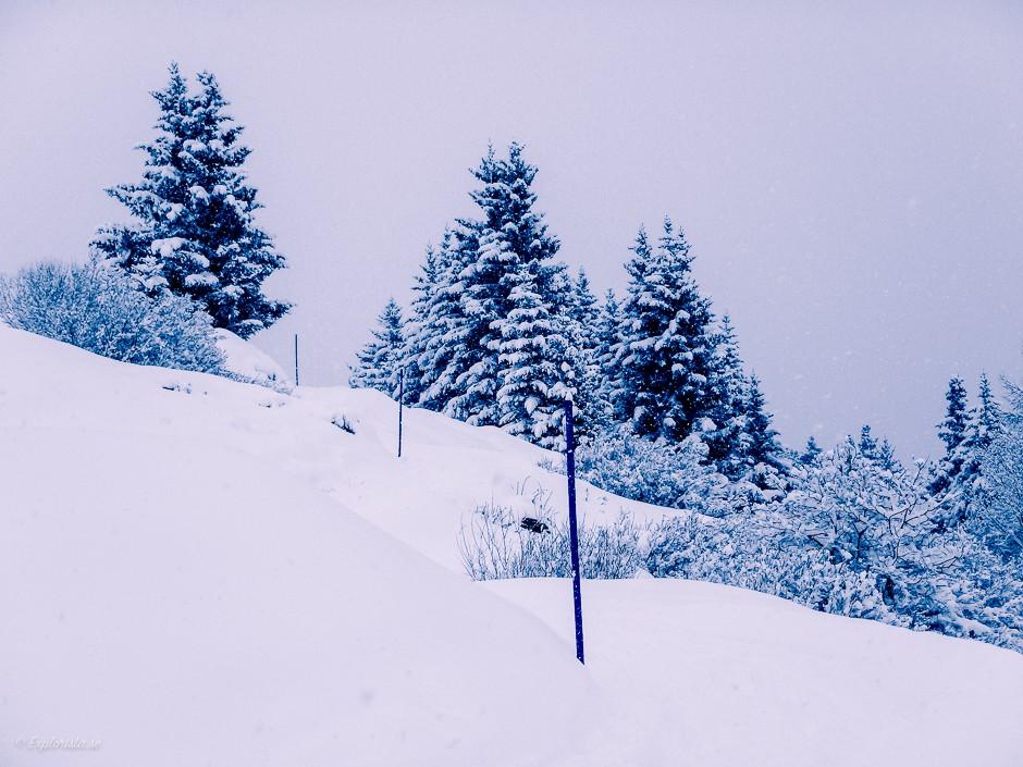 vandringsväg snö