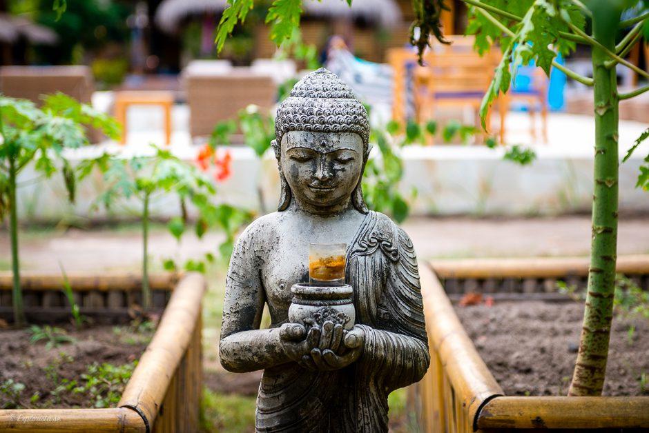 buddhastaty