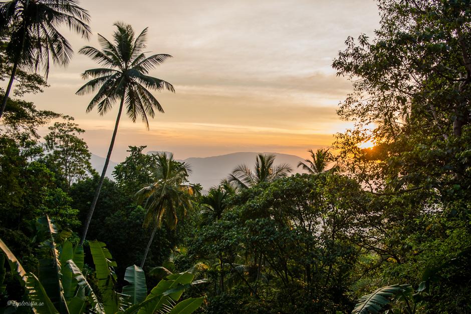 sunset train ride colombo-kandy