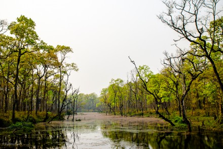 nepal naturreservat