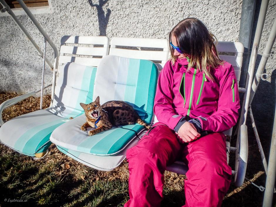katt och tjej hammock